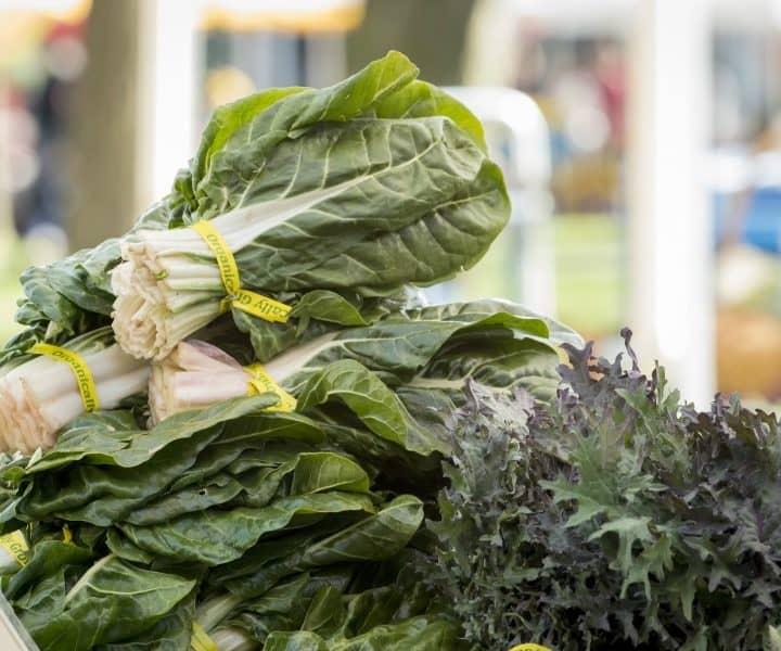 Protein Rich Leafy Greens